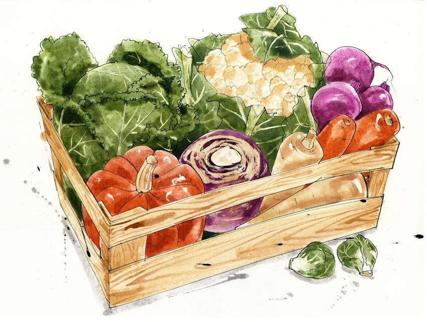 panier-legumes-bio